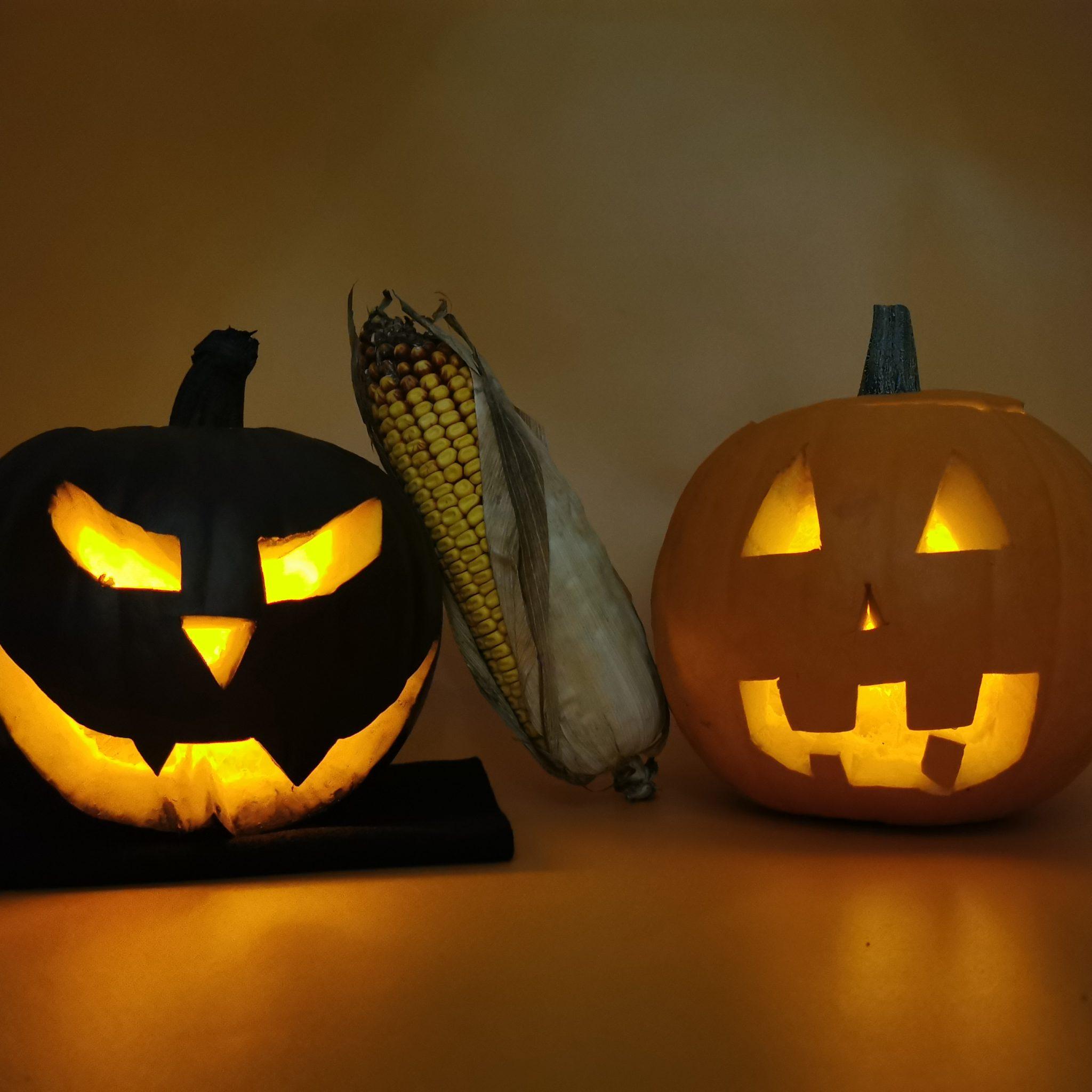 Décorations Halloween à faire  avec ses enfants